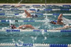 Langstreckenschwimmen 2019